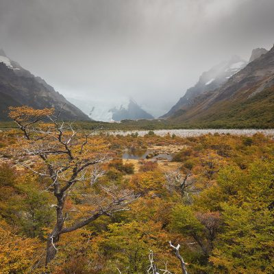 Patagonian valley at fall during a cloudy day