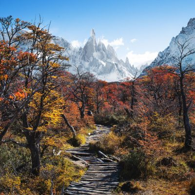 Hiking in Patagonian forest to Cerro Torre on a Fall day